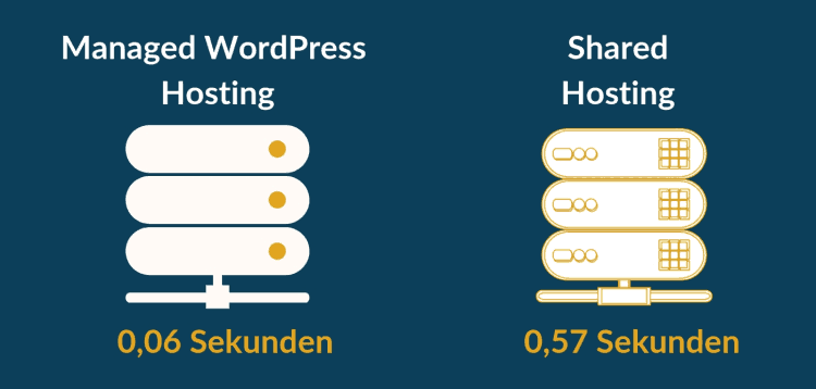 Managed WordPress Hosting um WordPress schneller zu machen