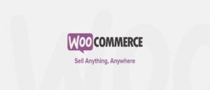 WooCommerce für einen Online Shop mit WordPress