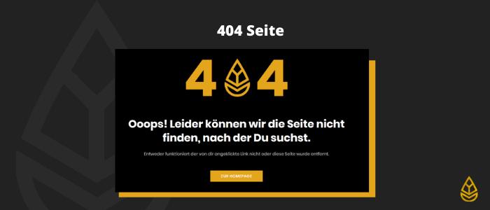 404 Seite - technisches SEO