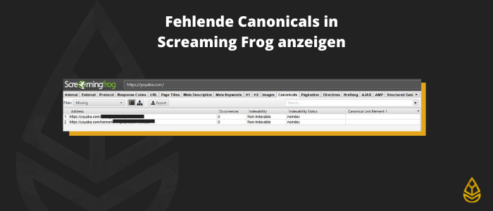 Fehlende Canonicals in Screaming Frog anzeigen