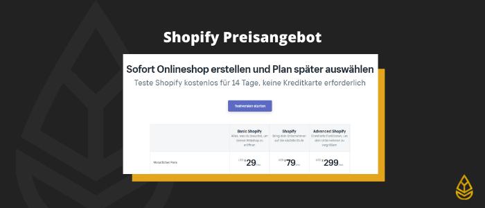 Shopify Preisangebot