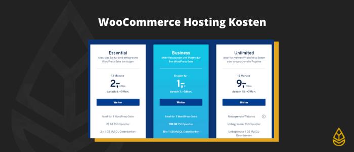 WordPress Shop Kosten Hosting